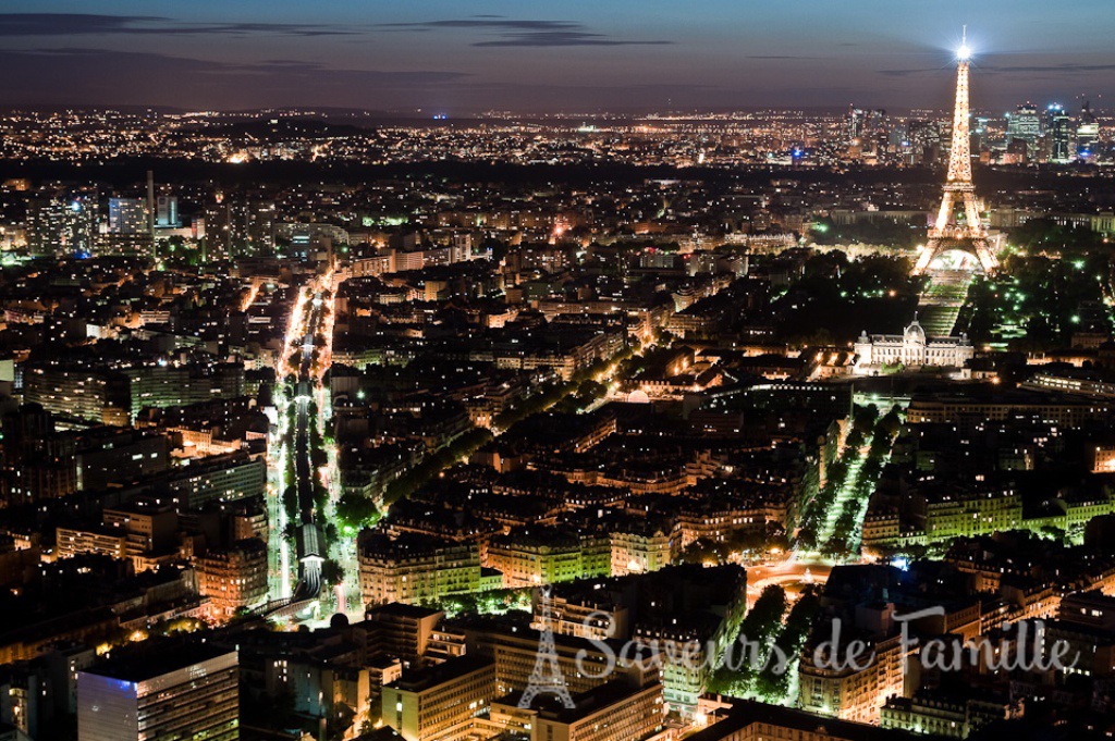 View of Paris from the Tour de Montparnasse